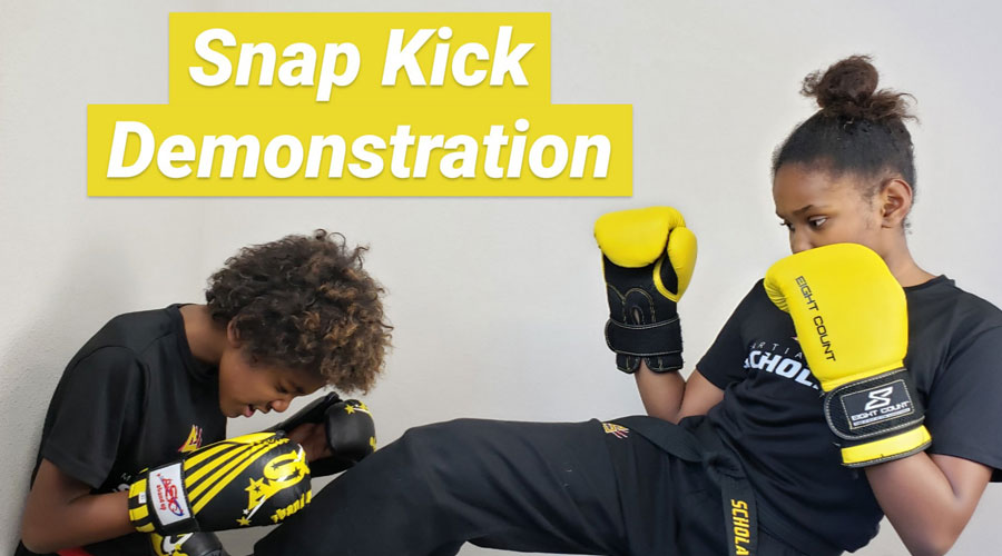 Snap Kick Demonstration