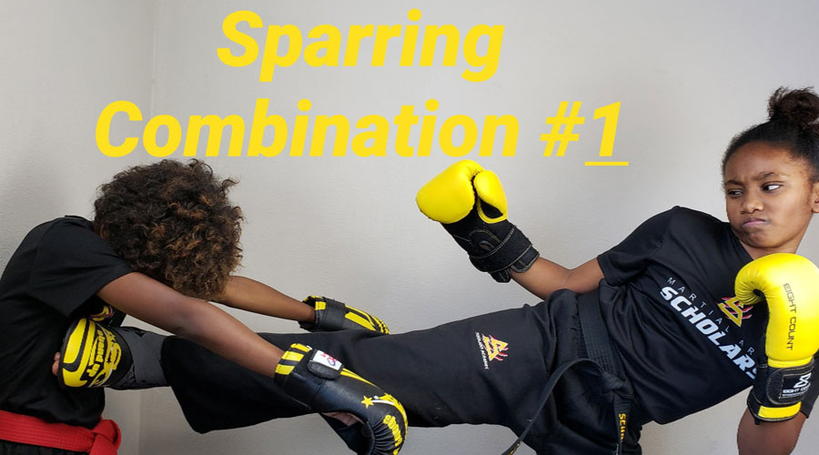 Sparring Combination #1